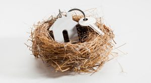 House keys in a birds nest